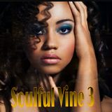 DJ-SPINMASTER - Soulful Vine Vol 3