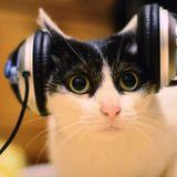Tech-house mix  1