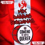 DJ E.S.E - Mix Barras Peruanas