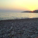 Summer | Seaguls | Sunsets