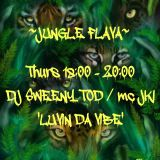 www.dreamfmk.com - dj sweeny tod - mc jki jungle set 21/8/14