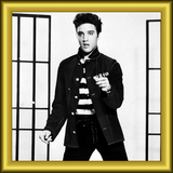 Hall of Fame: Elvis Presley