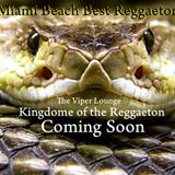 Miami Beach Reggaeton Mixtape 201- The VIPER Lounge Prague selected^mixed by DJ BONYBOY