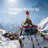 Shamanic Forest Chants - Himalayan Breeze