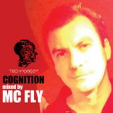 Mc Fly @ Cognition