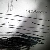 SEEMANTICA - 001