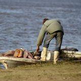 2016-03-15 │Pescadores afectados crecida del río │Jesús Pérez, Asoc. Civil de Pescadores de Santa Fe
