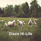 Disco Hi-Life / August 2015 (Burçin Ergünt Live Set)