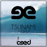 Tsunami (Ceed Mashup)