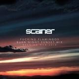 Fucking Flamingos Burn Night Sunset Mix - Burning Man 2016