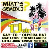 What's Gemidli Nephtek mix @ Villa K5 01/06/13