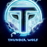 Trance Sector Mini Mix - Mixed By ThunderWolf