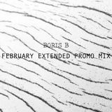 February Extended Promo Mix