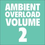 Ambient Overload Vol. 2