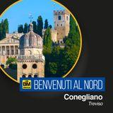 Benvenuti al Nord - Conegliano (TV)