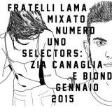 FL Mix a Caso 1 - Zia Canaglia & Biondi