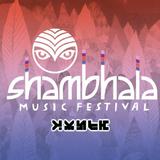 Shambhala 2017 - Zomby Riddim