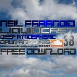 Neil Paranoid (( Liquidcast 38 )) Deep Atmospheric dnb Dj Mix Downloadable 320Kbps