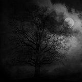 Black Mist I