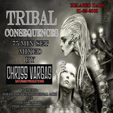 TRIBAL CONSEQUENCES ( 2008 MIX TAPE )