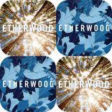 20161122 - Toby Spin presents Etherwood Double Album Showcase