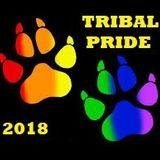 Tribal Pride 2018 - DJ Lucien Grillo