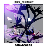 snowmageddon hibernation under_ground mix | january 2015