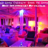 `Aya Napa Deep Culture`  Best Of Deep House Music  2014 ESSENTIAL MIX Vol.I Ep.III