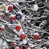 Saturday Night Noxious Society, 23.12.17: '(Hang Their) Baubles From The Yew Tree'