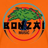 Stephen - Bonzai Traxx