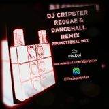 Dj Cripster - Reggae & Dancehall Remix (Promo Mix July 2017)