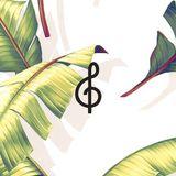 Devendra Banhart by Tecla Music Agency for Queremos!