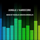 JUNGLE & HARDCORE  VOL 4 NU-GENERATION VINYL MIX BY NOODLES GROOVECHRONICLES