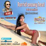 Torrid snowy heat - retro remixes