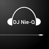 DJ Nie-Q - Defqon.1!