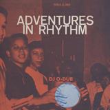 DJ O-Dub: Adventures in Rhythm (2003)