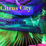 "Citrus City- ""SeaBass"""