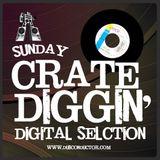 Dubconductor Crate Diggin' - Digital Stylee