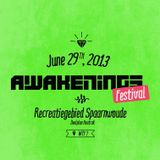 Blawan @ Awakenings Festival 2013 at Spaarnwoude 29-06-2013