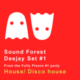 Sound Forest deejay set from Fully Fluoro #01 party. Disco/ disco house