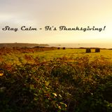 Stay Calm - It's Thanksgiving!