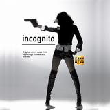 Incognito IV