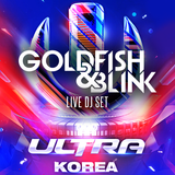 UMF KOREA 2015 - Goldfish & Blink