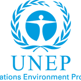 Executing The UNEP Report On Ogoni: A Sequel