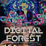 Jádro Pudla – bass/glitch/psychill @ Digital Forest 2017