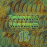 Psychedelic Wonderfuzz #15