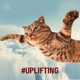 SET UPLIFTING TRANCE@ PLAYFREQUENCY MARATON DJS
