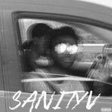 Sanity V
