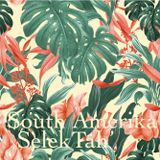 SelekTah' (South Amerika)