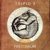 FREITRAUM - Tripio X - FREITRAUM Podcast 34.